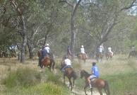 1300 Trail Rides