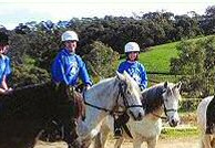 Templewood Horse Riding Centre